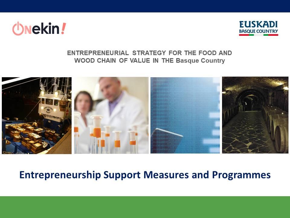 Entrepreneurship Support Measures and Programmes - 1