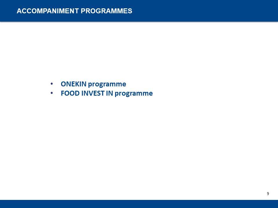Entrepreneurship Support Measures and Programmes - 9